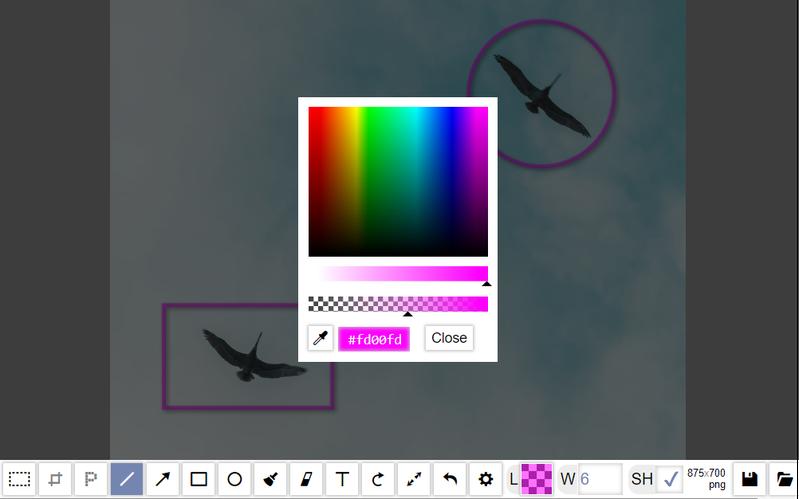 Painterro JS paint color
