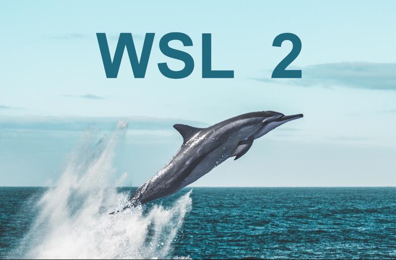 WSL 2 picture